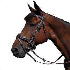 Bridon de dressage Flags & Cup Copenhague