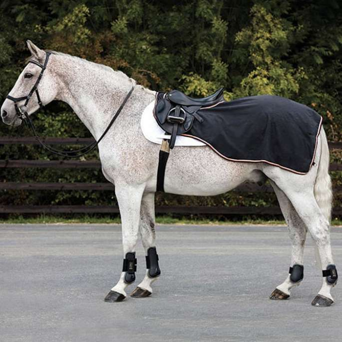 Rambo Waterproof competition - couvre-reins horseware