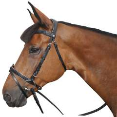 Bridon rose gold - Canter